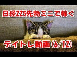 日経225先物ミニで稼ぐ~デイトレ動画(20180613)