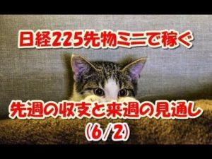 【副業 せどり】LINE Pay × セドリ スマホ決済サービスのポイント還元で利益アップ!!