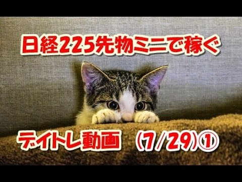 日経225先物ミニで稼ぐ~デイトレ動画(7/29)①