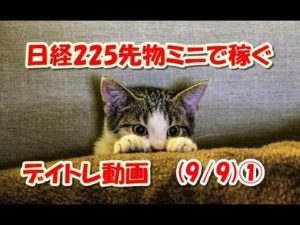 Airbnbとは?日本の民泊副業で稼ぐ7つのコツ!トラブルとリスク回避